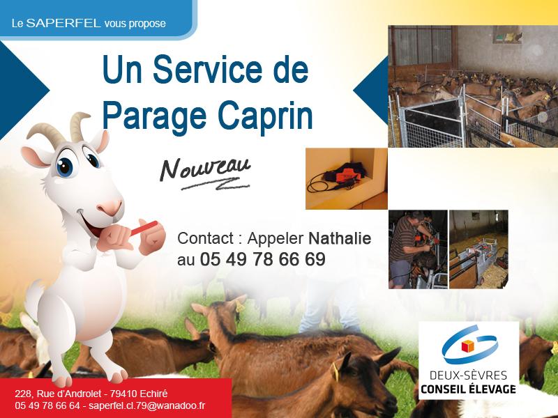 Service de parage carpin