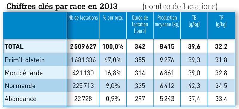 Chiffres clés par race en 2013